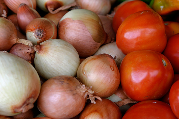 Producción de tomate y cebolla_achuapa_naturaleza_gal5