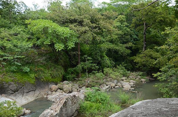 Río Achuapita__naturaleza_gal3